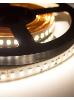 Wavelux 24V 5630 Constant Current LED Strip 5m off main