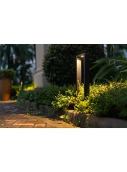 Ambiglow Pathway LED Light