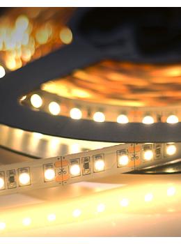 WAVELUX 12V FINE 3528 LED STRIP LIGHT 5M