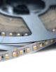 Wavelux 24V Fine 3528 LED Strip Light 5M OFF