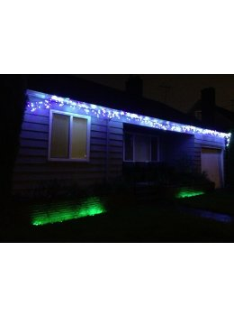 LED Christmas Lights - In Purple and White